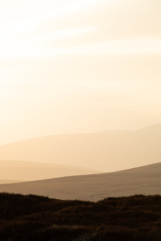 Glen+Dye+-+Landscapes-9.jpeg