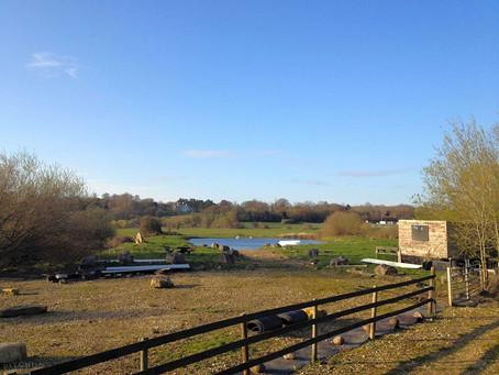 Wimborne Fishing Lake (Basic Camping)