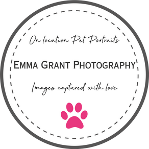 Emma Grant Photography - Dorset Based Pet Photographer