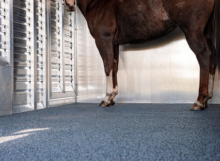 Hoof Grip | Helping Your Horse!