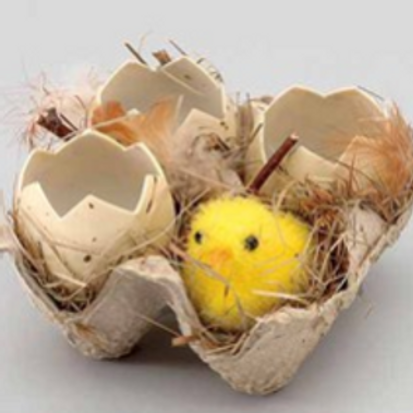Chick Egg Crate