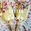 Thumbnail: CAKEsicle Box