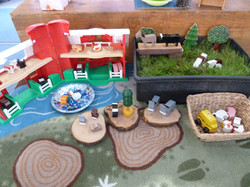 Mini play area