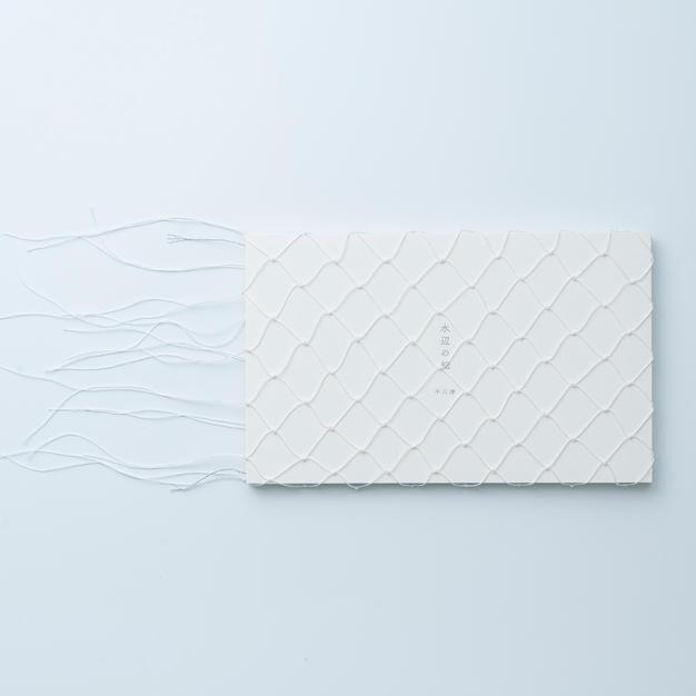 平川渚作品集「水辺の蛇」白
