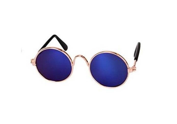 Óculos Pet Azul