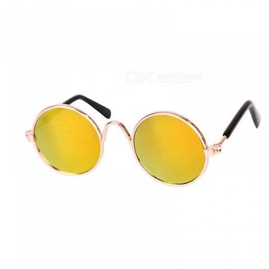 Óculos Pet Amarelo