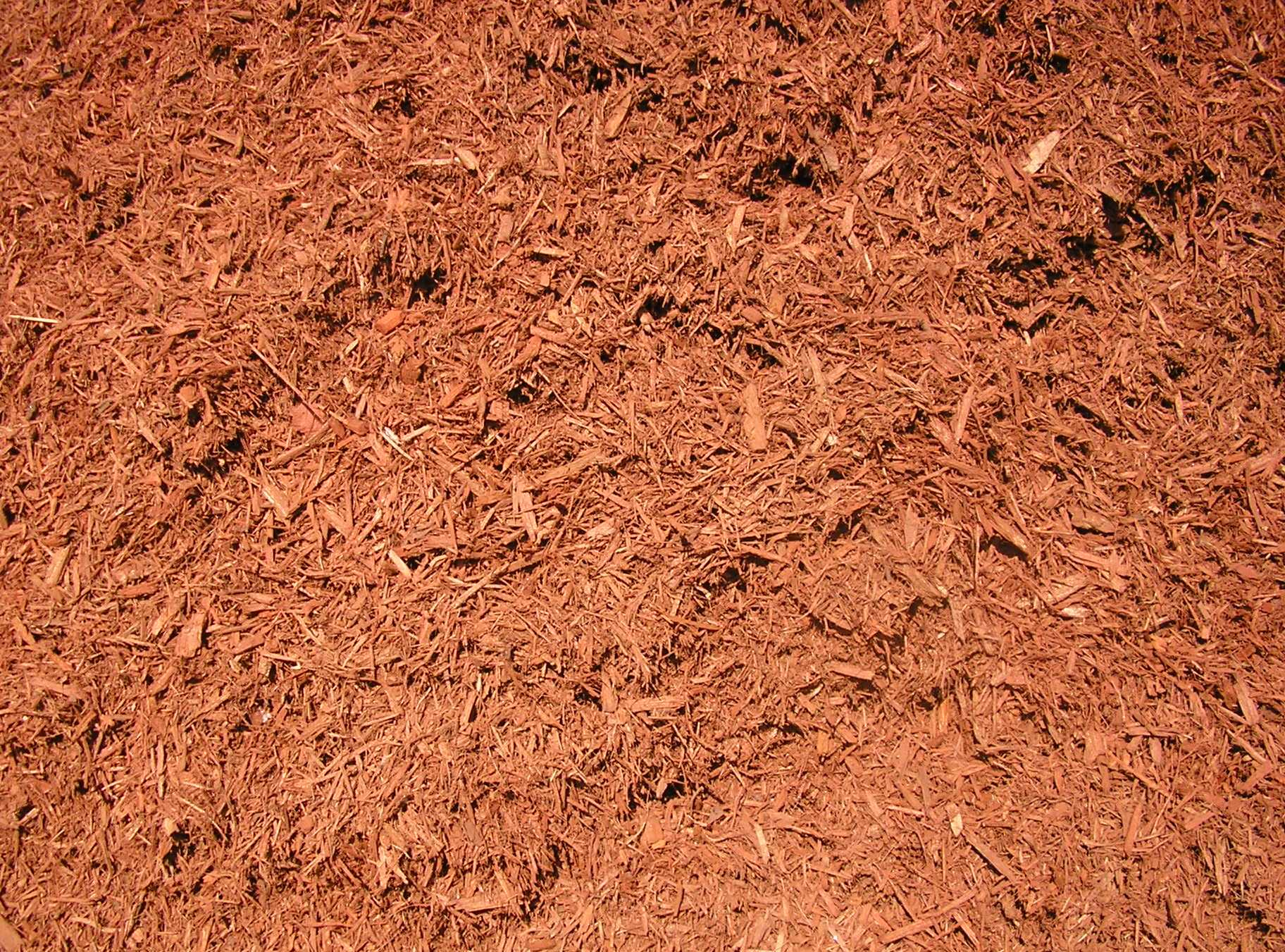 RedMulch background.JPG