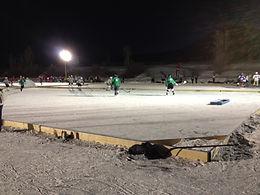 Pabst Colorado Pond Hockey, Colorado Pond Hockey Tournament, PBR Pond Hockey