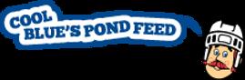 Pond Hockey, Pond Hockey Tournament