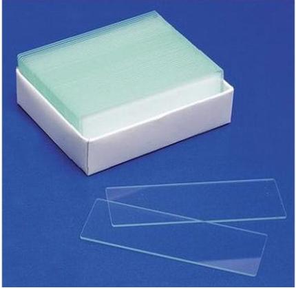 Glass Slides for Microscope