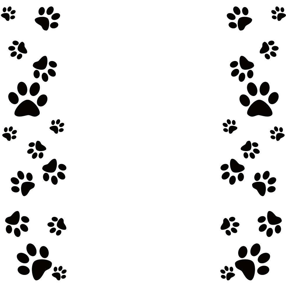 dog-paw-border-2.jpg