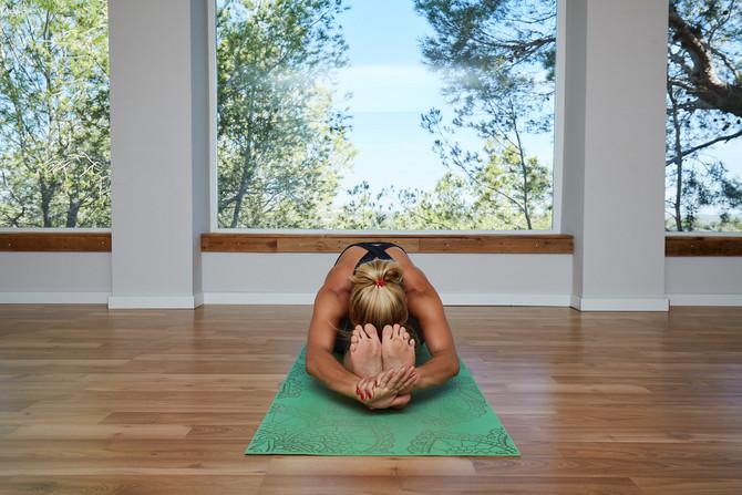 Introducción a la Práctica del Yoga
