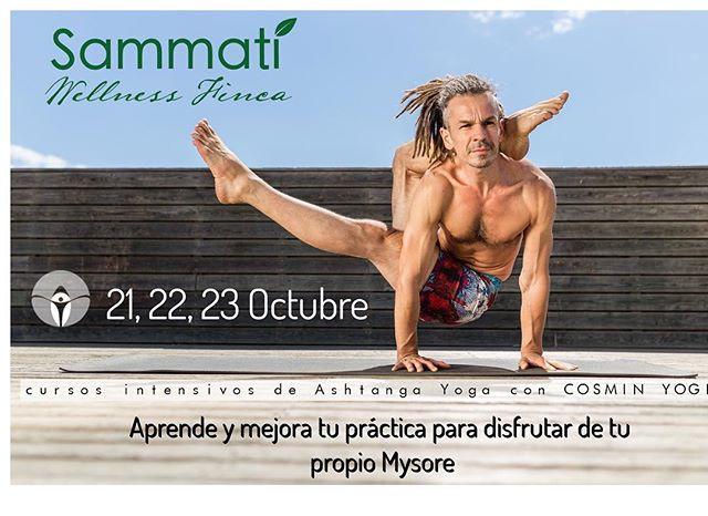 Curso Intensivo De Iniciación En Ashtanga Yoga