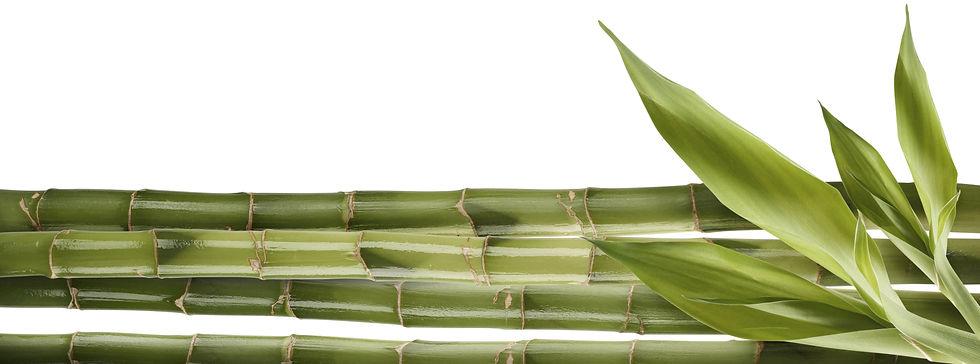bamboo-stick-shoots-crop_hor.jpg