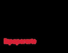 LizPaperArts_logo.png