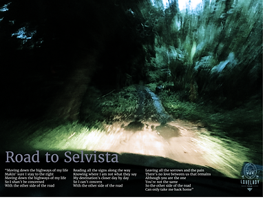 Road to Selvista.png