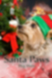 Santa Paws by Meg Mims