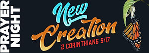 new creation banner copy.jpg