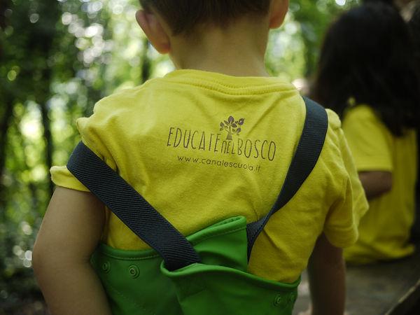 Educare nel bosco Fimon   scuola nel bosco vicenza   Giulia Dal lago