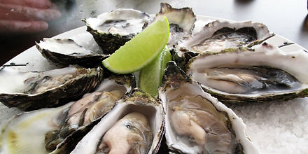 Pacific Oysters on a plate.jpg