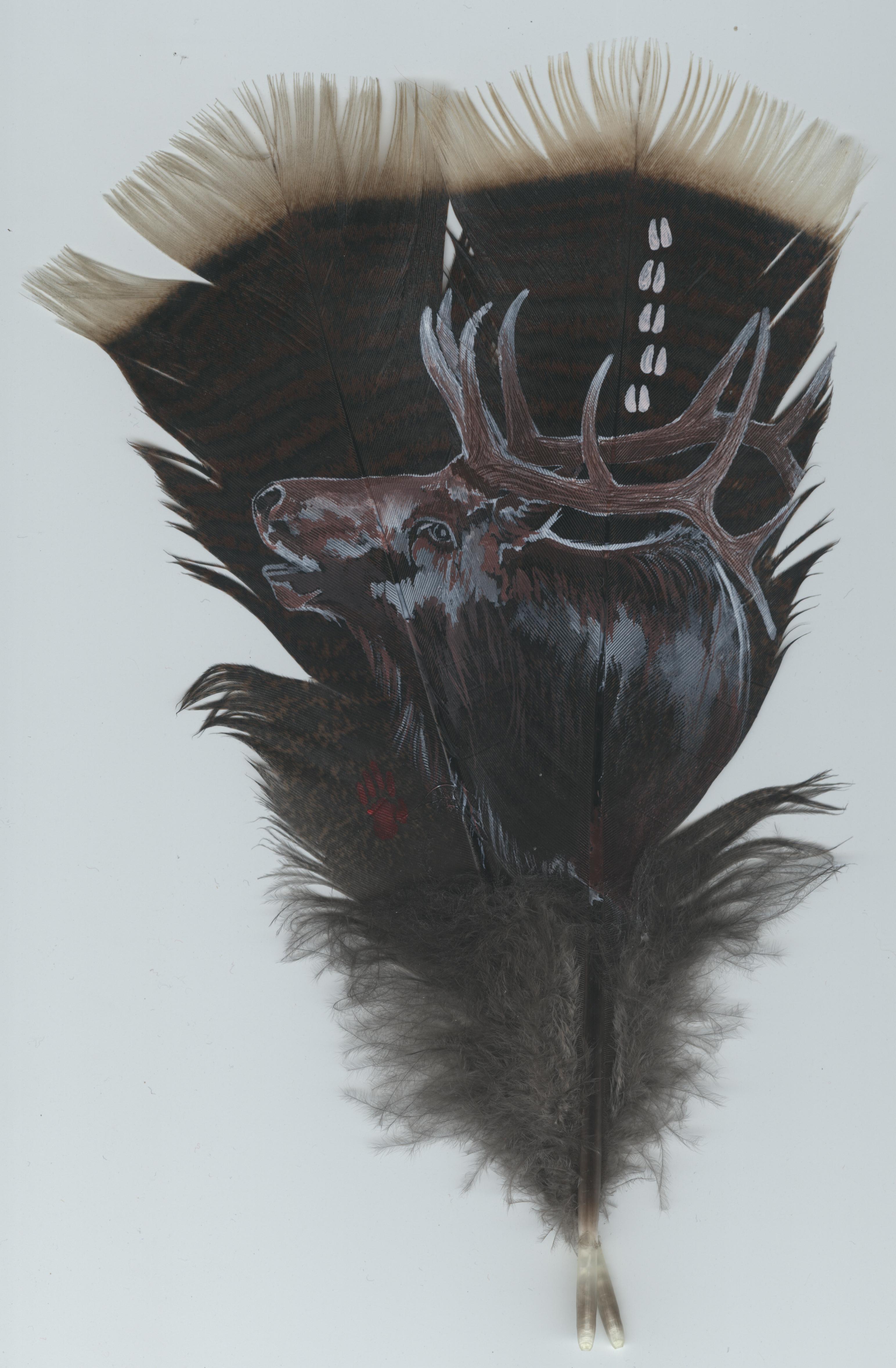 Acrylic on wild turkey feathers