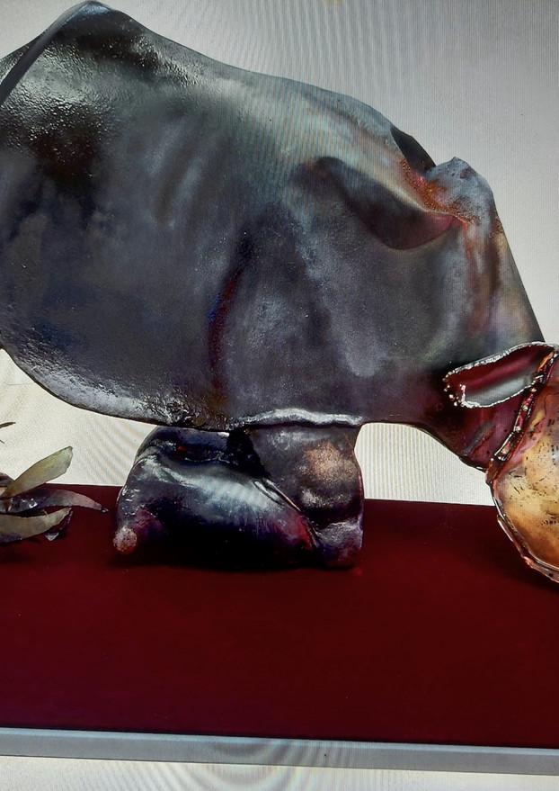 TIME MARKER: ... Rhino, Rhino... life a-go-go
