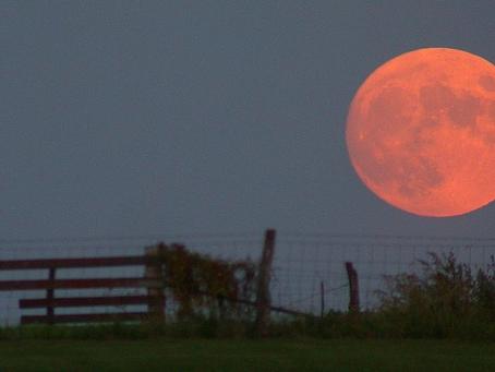 C'est la pleine Lune, découvrez la sélénisation!