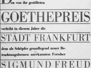 """Freud ve Edebiyat - """"Madam Bovary benim diyen erkek, psikanalitik okuma yapmaya başlamıştır&#39"""