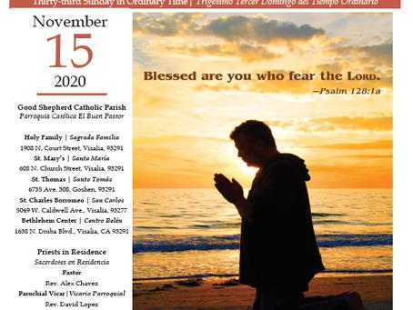 Bulletin: November 15, 2020