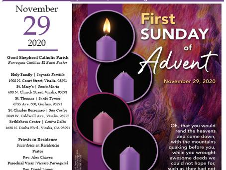 Bulletin: November 29, 2020