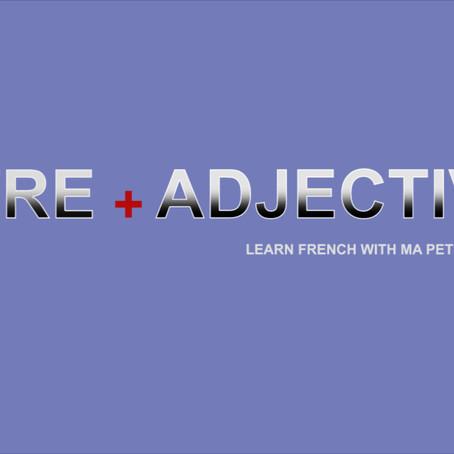 ETRE+ ADJECTIVE- M.P.F G102