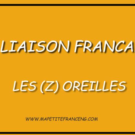 LA LIAISON FACULTATIVE- M.P.FG101