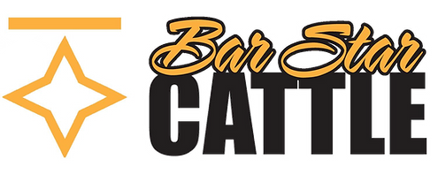 barstar_logo_black-page-001 transparent.