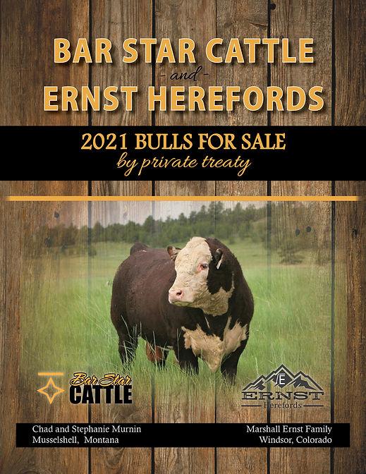 Bar Star Cattle 2021 Bull Catalog.jpg