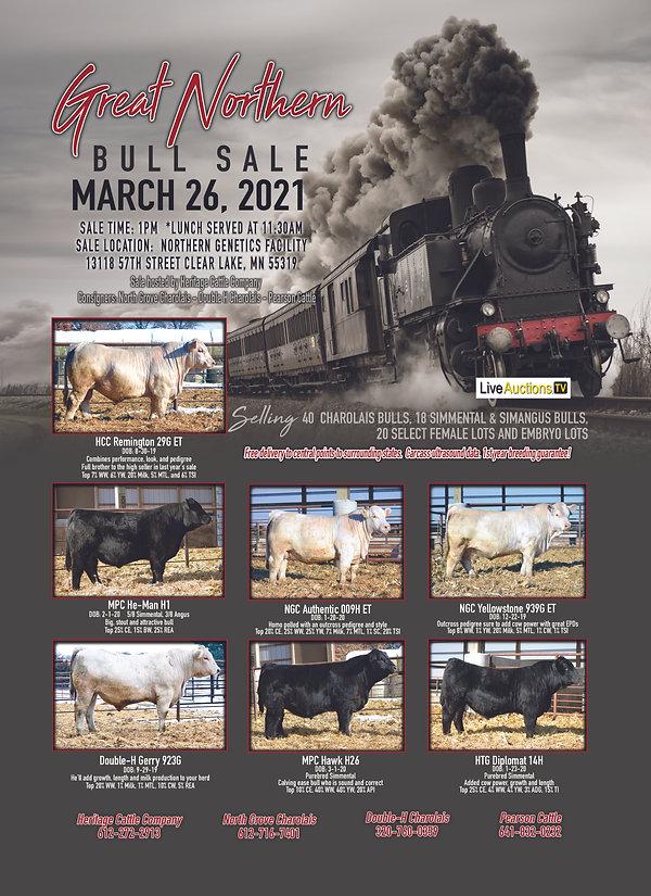 Great Northern Sale PRINT.jpg
