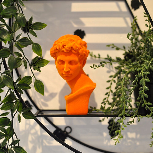 Orange Flocked David Bust