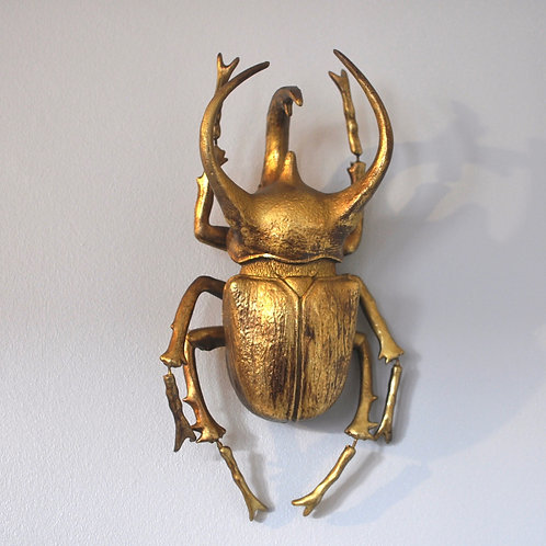 Large Gold Atlas Beetle Wall Hanging