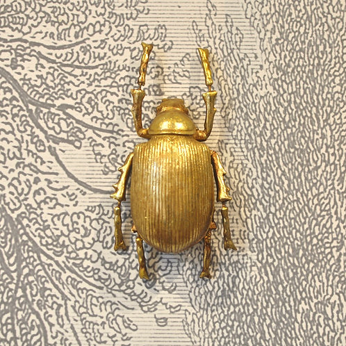 Gold Ground Beetle Wall Hanging