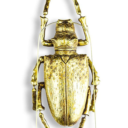 Fab Large Gold Soldier Beetle Wall Decor