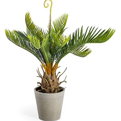 Faux Potted Cycad Plant