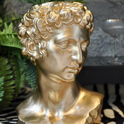 Gold Stone Effect David Bust Planter