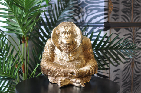 Gold Orangutan_01.JPG