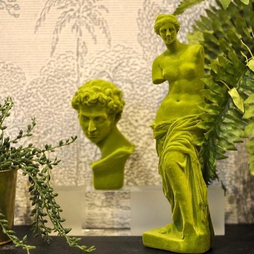 Green Flocked David Bust