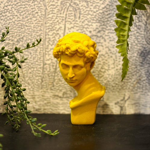 Yellow Flocked David Bust
