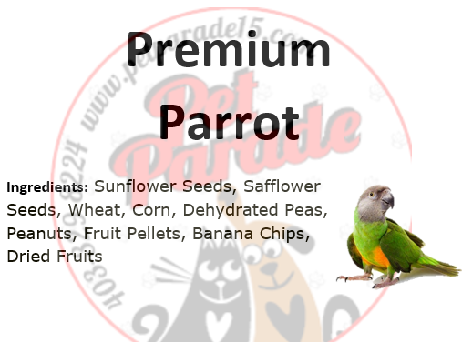Premium Parrot