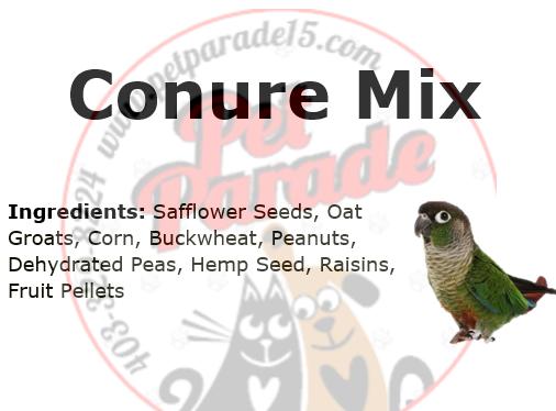 Conure Mix