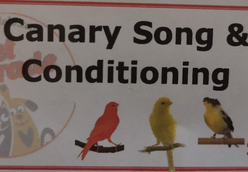 Canary Song & Conditioning