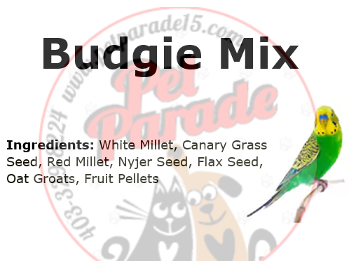 Budgie Mix