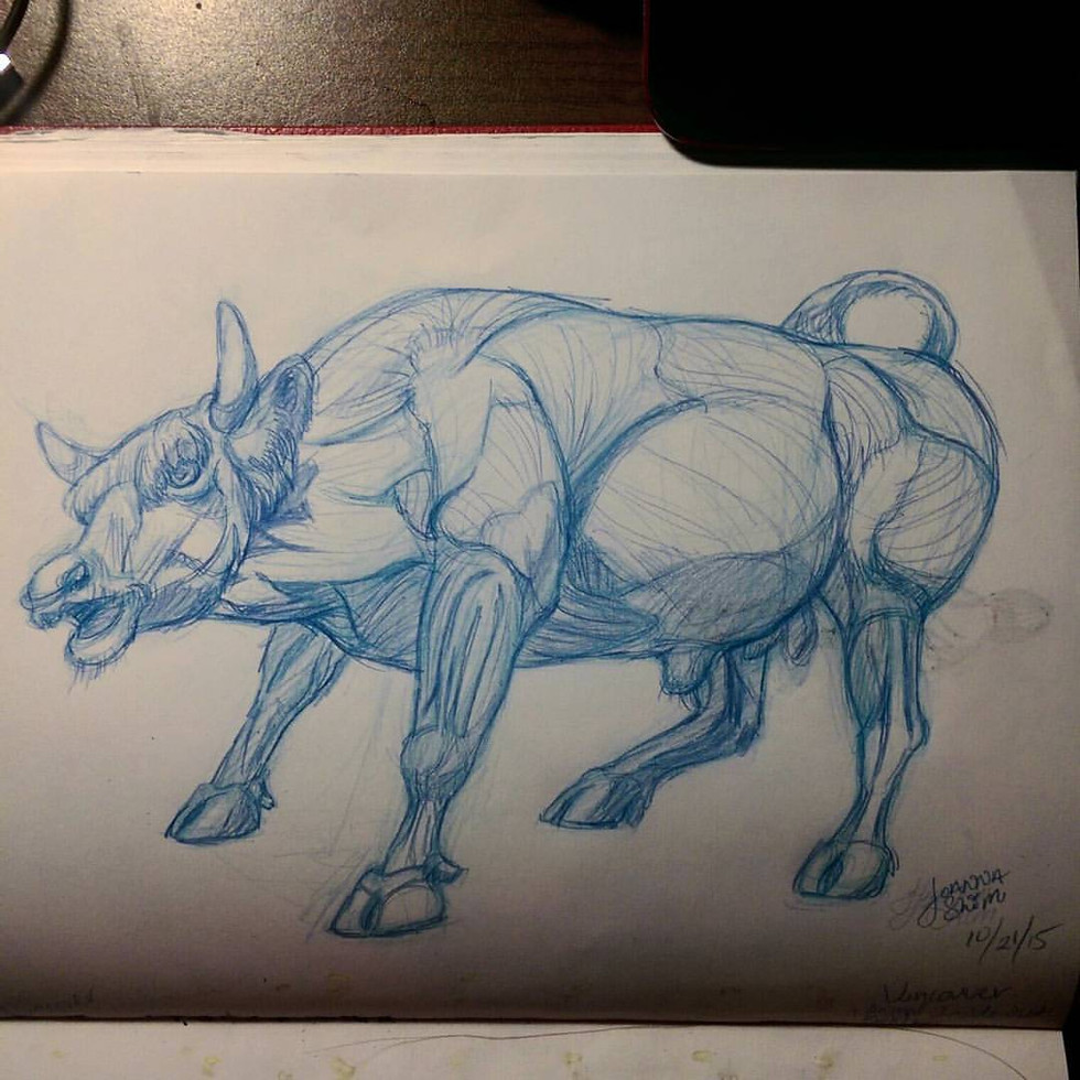 Sketching at Science World during the Body World's: Animal Inside Out Exhibit
