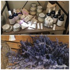 St Kit's Lavender Farm
